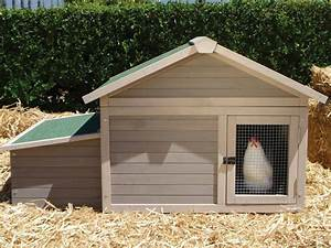 Steps To Build A Chicken Coop  How To Build Chicken Coops