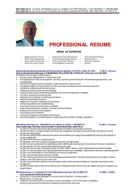 professional resume hm 2016