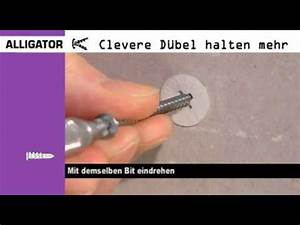 Dübel Für Hochlochziegel : alligator gipskarton d bel youtube ~ Frokenaadalensverden.com Haus und Dekorationen