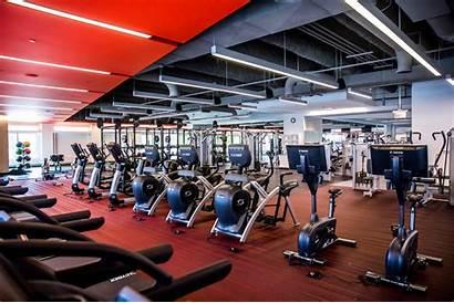 Fitness Club Gym Company Dubai Nb Services