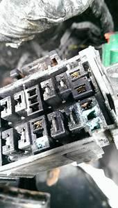 Electrical Corrosion - Ericthecarguy
