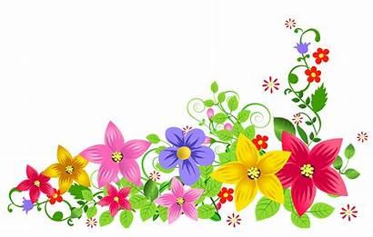 Transparent Floral Freepngimg