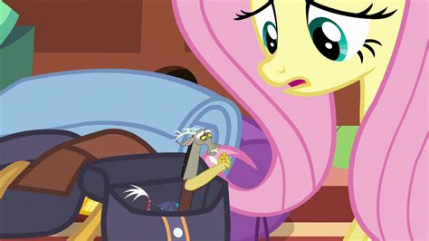 Image Discord Asking To Come With Fluttershy S6e17png