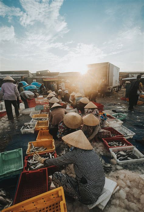 Bustling Fishing Port Ria Vung Tau News Vietnamnet