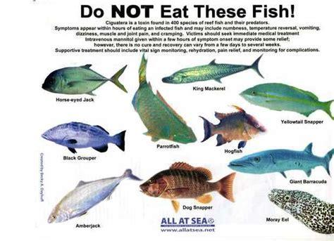 eat  sea fish hfd vitamins trace