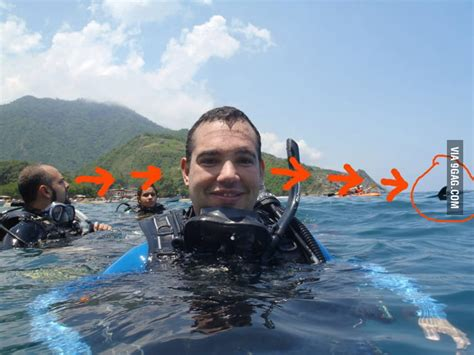 photobomb lvl shark gag