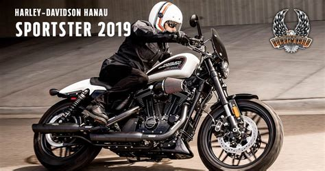 Harley Davidson Roadster 2019 by Sportster 2019 Superlow 183 Iron 883 183 Iron 1200 183 Forty