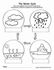 Best Water Cycle Worksheets - ideas and images on Bing | Find what ...