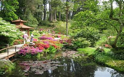 Japanese Garden Wallpapers Flower Awesome