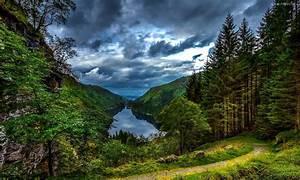 Lake Mountain Forest Path Wallpaper Hd 12830