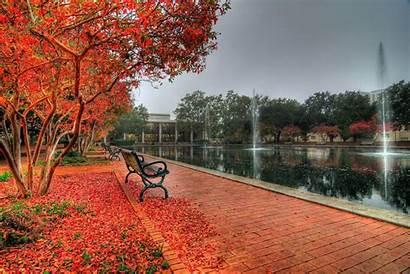 Carolina University South Usc Campus Autumn Wallpapers
