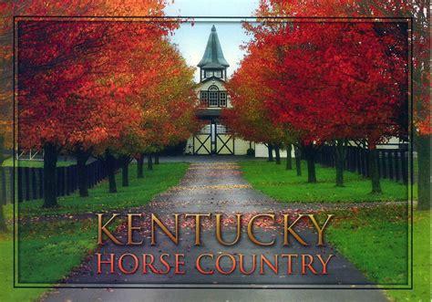 Kentucky Horse Country Kentucky Has More Thoroughbred