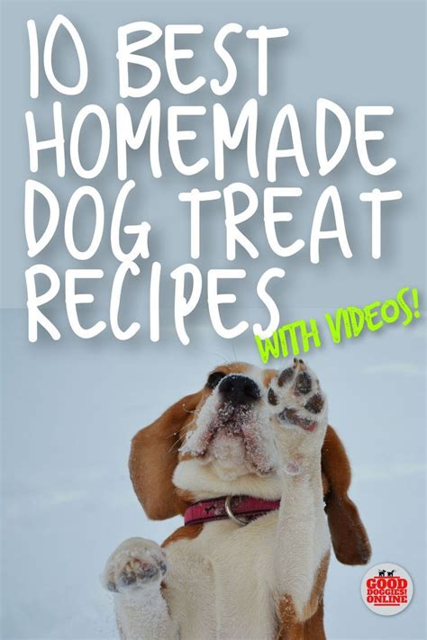 And these pb treats are liked by my dog, and has very simple ingredients. Homemade Dog Treat Recipes | Video Help - Good Doggies Online | Homemade dog, Dog training, Dog ...