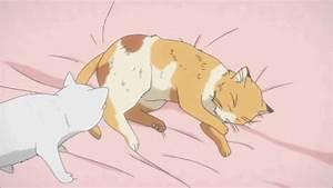 cartoon cat anime cat gif | WiffleGif