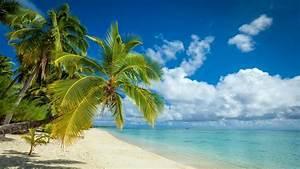 nature, Landscape, Tropical, Island, Beach, Palm Trees ...