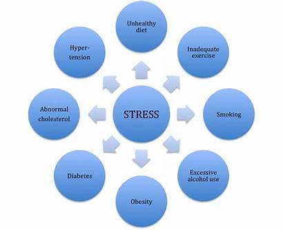 Stress Disease Heart Factors Risk Kill Induced