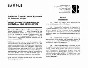 18 license agreement With intellectual property licence agreement template