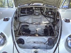 Volkswagen Trans En Provence : ma nouvel coccinelle ~ Gottalentnigeria.com Avis de Voitures
