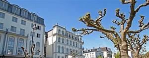 Bad Homburg Wohnung Mieten : immobilien in bad homburg und umgebung ihr immobilienmakler f r exklusive immobilien ~ Orissabook.com Haus und Dekorationen