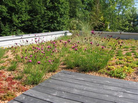 Der Blühende Garten der naturnahe garten hagg moser garten und