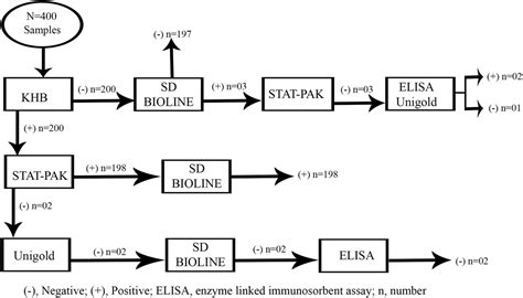 Sd Phase Diagram by The Diagnostic Performance Evaluation Of The Sd Bioline