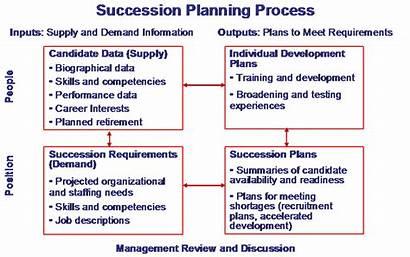 Succession Planning Key Process Management Success Hr