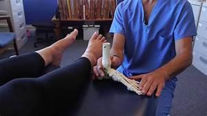 Spread Your Toes U2122 Series  Capsulitis