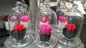 Rose Eternelle Sous Cloche : rose eternelle original lyon livraison de fleurs ~ Farleysfitness.com Idées de Décoration