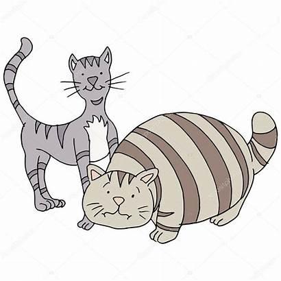 Fat Skinny Katzen Magere Dicke Katze Cteconsulting