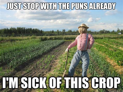Pun Meme - scarecrow meme takes corn y humor to a whole new level