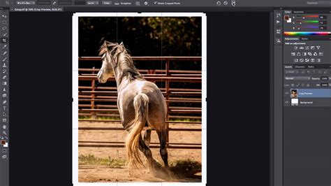 easy ways  add borders  images  photoshop