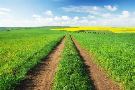 Quick Guide to Financing a Rural Land Purchase ...