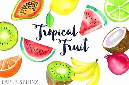 Fruit Clipart Tropical Watercolor Clip Salad Pineapple