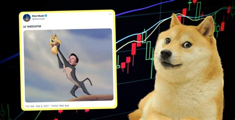 Dogecoin: What is it, how do I buy it and can Dogecoin ...