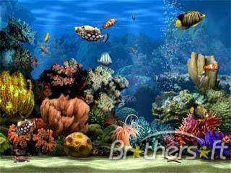 Living Marine Aquarium 2 Animated Wallpaper - free living marine aquarium 2 screensaver living