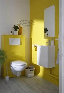 Decoration des wc 5 idees originales et tendances blog for Beautiful couleur de peinture pour wc 3 deco wc jaune