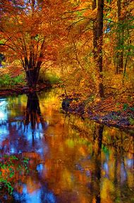 Beautiful Michigan Fall Color
