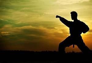 La Disciplina Como Camino A La Felicidad  El Arte De Dominar La Voluntad