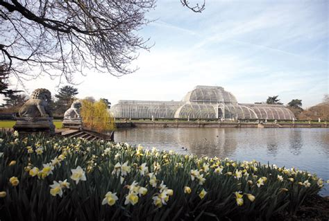 The Waterlily House At Kew Gardens, An Architectural
