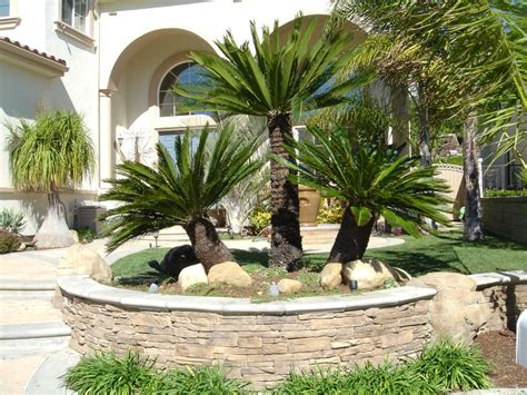 tropical backyard landscaping ideas palm tree landscape design ideas modern for small front yards this for all