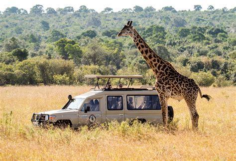 6-Day Luxury Lodging Safari In Tanzania   experitour.com