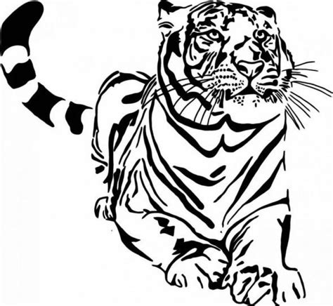 wild animals coloring books  coloring pages fun