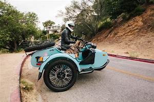 Related Keywords & Suggestions for motorcycle sidecar for dogs