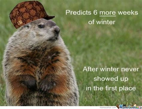 Groundhog Memes - groundhog memes best collection of funny groundhog pictures