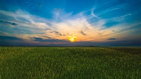 The picturesque sunrise above green field. time lapse ...