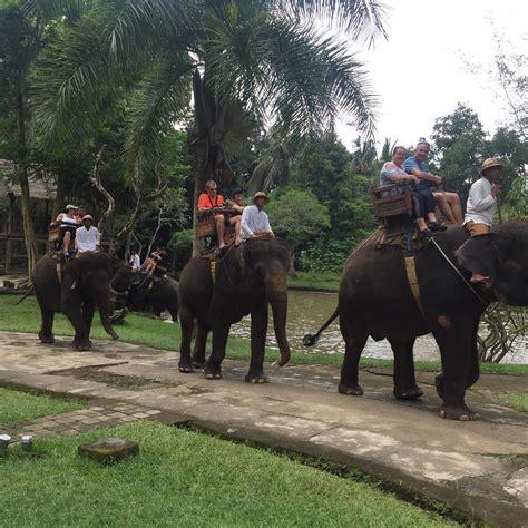 wisata naik gajah  bali cocok jadi destinasi liburan