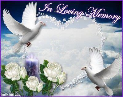resultat de recherche dimages pour angels dove images