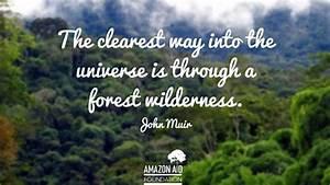 9 Inspiring Quo... Amazon Jungle Quotes