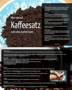 Geruch Im Kühlschrank Was Tun : einige dinge die sie mit kaffeesatz machen k nnen ~ Bigdaddyawards.com Haus und Dekorationen