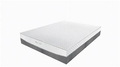Mattress Plus Deluxe Foam Bed Memory Luxury